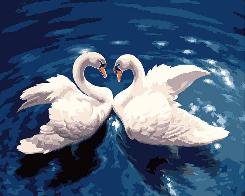 Картина по номерам Танец лебедей, 40x50 см., Rainbow art