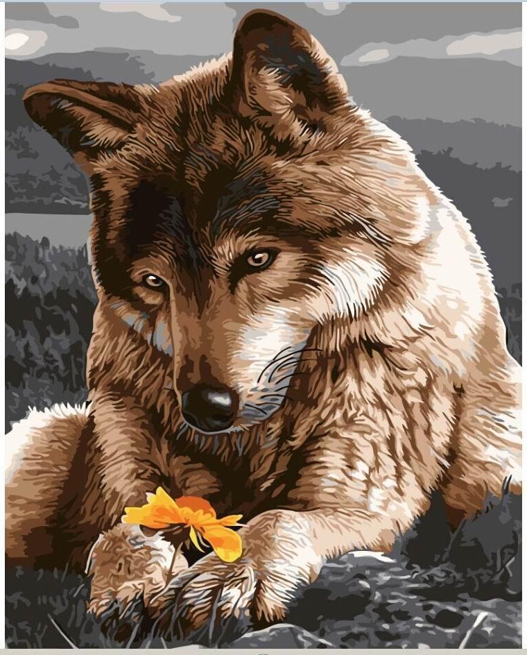 Картина по номерам Волчица, 40x50 см., Rainbow art