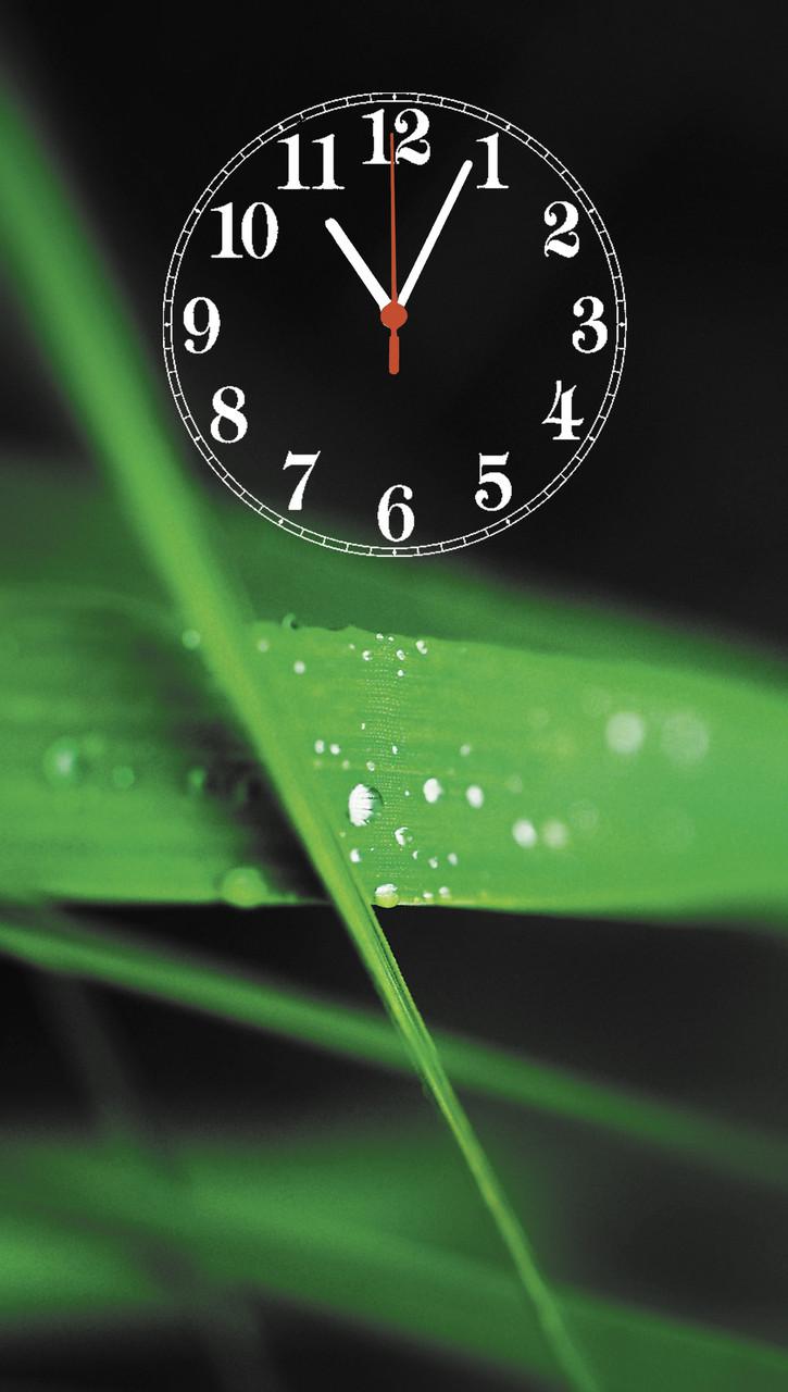 """Часы настенные стеклянные """"Листья бамбука"""""""