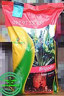 "Семена свеклы кормовой ""Бригадир"", 10 кг"