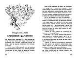 Чудесна мандрівка Нільса Гольгерсона з дикими гусьми. Лагерлеф Сельма, фото 4