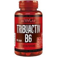 Трибулус с витамином В6 капсулы 90шт Activlab (06288-01)