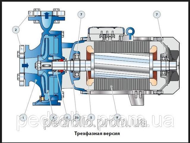 Конструкция Насоса Pedrollo F 40/200A