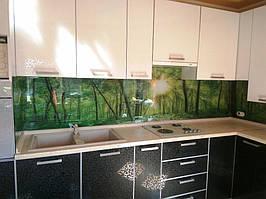 Скинали - лес. Установка стеклянного фартука на кухне в Запорожье 2