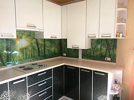 Скинали - лес. Установка стеклянного фартука на кухне в Запорожье 3