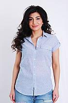 Блуза з коротким рукавом в смужку, колір-блакитний. Туреччина. розм.42, 44, 46, фото 2
