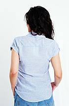 Блуза з коротким рукавом в смужку, колір-блакитний. Туреччина. розм.42, 44, 46, фото 3