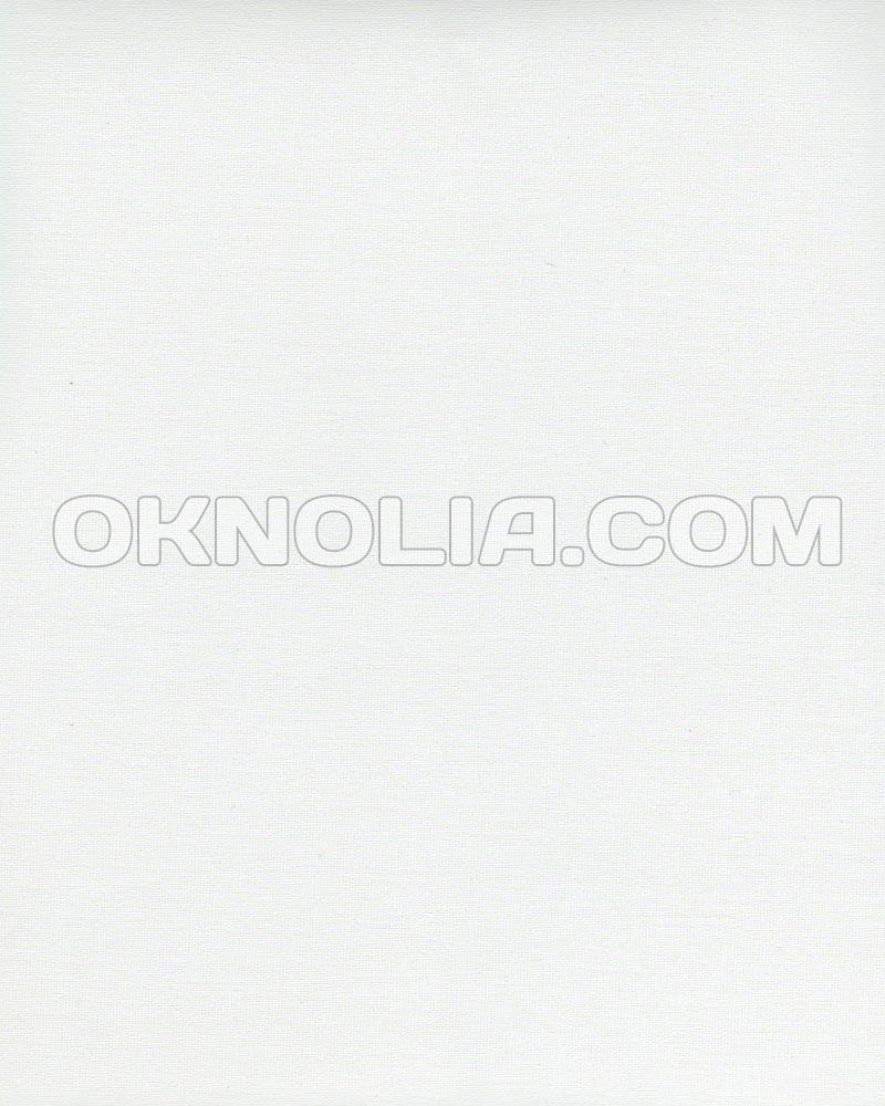 Ролеты тканевые на окна, жалюзи, рулонная штора, ролштора Гемма 2 2010 белый, 40*160 см