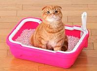 Преимущества разных типов наполнителей для кошачьих туалетов