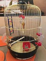 Как правильно подобрать клетку для попугая