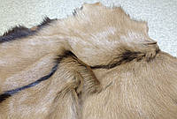 Мех Козлик натуральный беж, фото 1