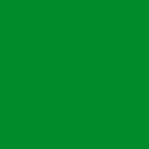 Фетр жесткий 2 мм, 50x33 см, ЗЕЛЕНЫЙ