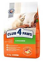 """Клуб 4 Лапы Premium """"Курица"""". сухой корм для котят. 5кг."""