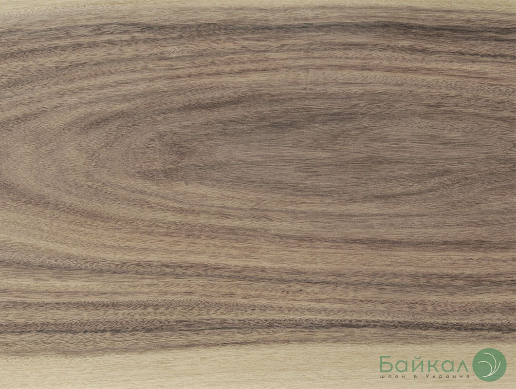 Шпон Ясень цветной 2,5 мм (оливковый) АВ сорт - 2,10 м+/10 см+