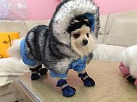 """Комбинезон для собаки """"Зайка"""" зимний"""