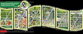 Біологічний комплект стендів БІО-001-3