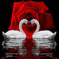 """Схема для вышивки бисером """"Лебеди и роза"""". СКВ-196"""