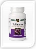 Эхинацея-иммуномодулятор
