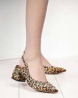 Туфли женские в лео принте, фото 1