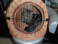Домик для животных с дверью, плетенный из лозы. Корзина для кошек и собак.