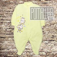 Детский человечек слип бодик р. 74 (5  6 7 месяцев) трикотажный для новорожденного ткань ИНТЕРЛОК 3044 Желтый