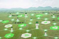 Искусственный интеллект будет мониторить земельные угодья в Украине