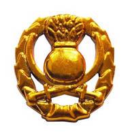 Эмблема общевойсковая старая, золото