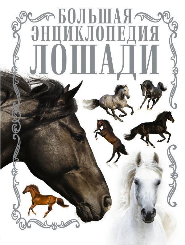 Лошади. Большая энциклопедия. Спектор Анна Артуровна