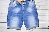 Мужские шорты Fang 2116 (32-40/8ед) 12.5$