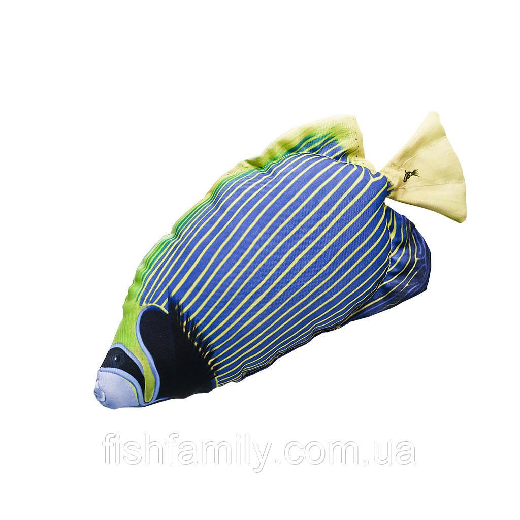 Подушка-рыба Gaby Императорский ангел 56х25см(3KB2057)