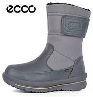 60e6f8db2 Сапоги женские зимние кожаные Ecco Gore-Tex Terra Grey, Серый, 37
