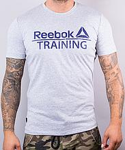 Футболка мужская хлопковая Reebok серая с синей надписью, Серый, XL