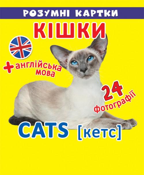 БАО Розумні картки Кішки