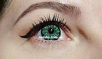 Цветные линзы для зрения. Зелёные линзы для зрения Ваниль