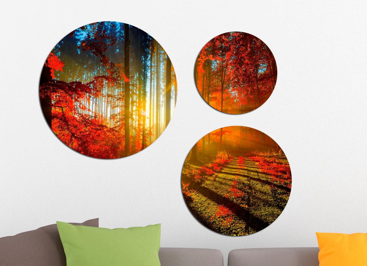 Фотокартина модульная Круглая 3 модуля Осенний лес