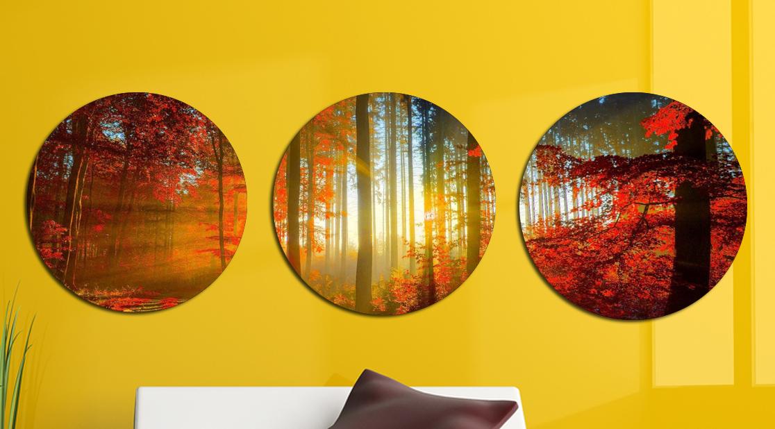 Картина модульная Круглая 3 модуля 50 смØ Осенний лес