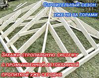 Импрегнация стропильных систем, балок, лаги, фото 1