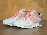 Кросівки жіночі Reebok GL 6000, фото 1