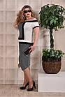 Плаття в смужку 0231-1 великий розмір, фото 3