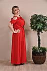 Червоне плаття великий розмір 0259-1, фото 3