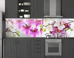 Пластиковый кухонный фартук ПВХ Цветущие орхидеи 01, стеновые панели пластик скинали фотопечать, Цветы, белый