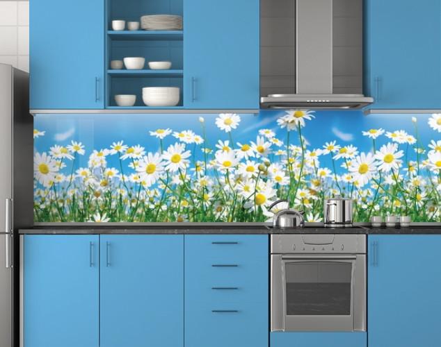 Пластиковый кухонный фартук ПВХ Ромашки на стеблях, стеновые панели пластик скинали фотопечать, Цветы голубой