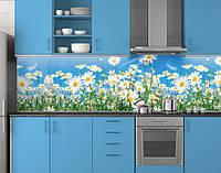 Пластиковый кухонный фартук ПВХ Ромашки на стеблях, стеновые панели пластик скинали фотопечать, Цветы голубой, фото 1