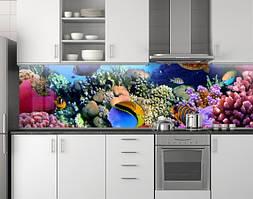 Пластиковый кухонный фартук ПВХ Аквариум 02, стеновые панели пластик скинали фотопечать, рыбы, кораллы