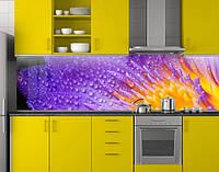 Пластиковый кухонный фартук ПВХ Фиолетовый цветок с желтыми тычинками, стеновые панели пластик скинали Цветы,, 620*2050 мм, фото 1