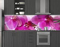 Пластиковый кухонный фартук ПВХ Розовые орхидеи 07, стеновые панели пластик скинали фотопечать Цветы, розовый, фото 1