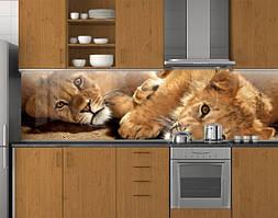 Пластиковый кухонный фартук ПВХ Львы, стеновые панели пластик скинали фотопечать, Животные, коты, бежевый