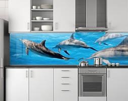 Пластиковый кухонный фартук ПВХ Семейство дельфинов, стеновые панели пластик скинали фотопечать, рыбы, дельфин