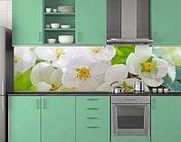 Пластиковый кухонный фартук ПВХ Цветущая яблоня, Стеновая панель для кухни с фотопечатью, Цветы, белый