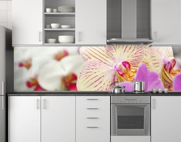 Пластиковый кухонный фартук ПВХ Разные орхидеи, стеновые панели пластик скинали фотопечать, Цветы, белый